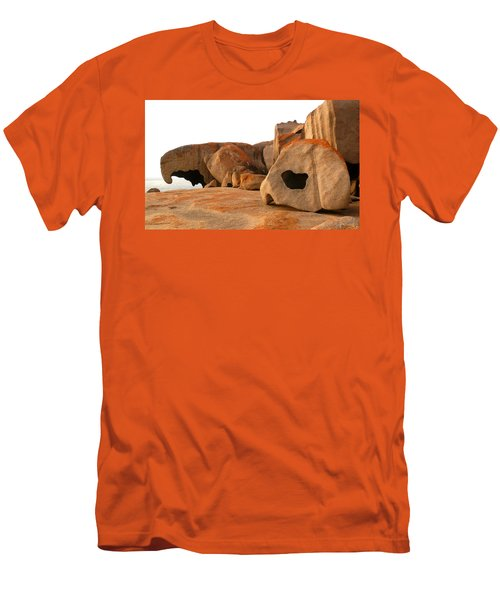 Remarkable Rocks Men's T-Shirt (Slim Fit) by Evelyn Tambour