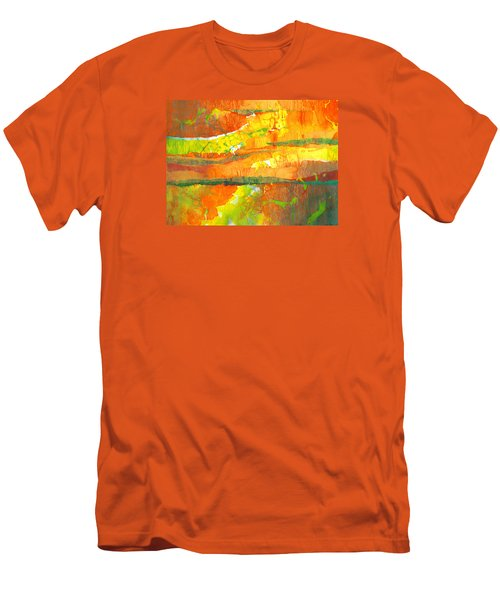Strata Men's T-Shirt (Slim Fit) by Lynda Hoffman-Snodgrass