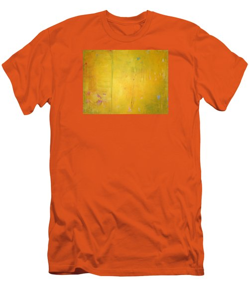 Summer Rain C2011 Men's T-Shirt (Slim Fit) by Paul Ashby