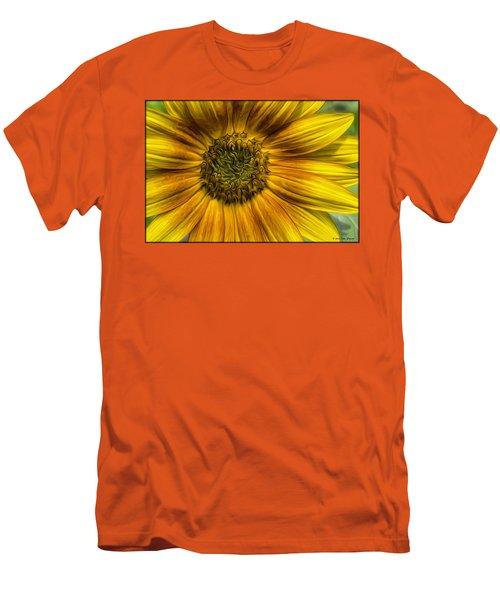 Sunflower In Oil Paint Men's T-Shirt (Slim Fit)