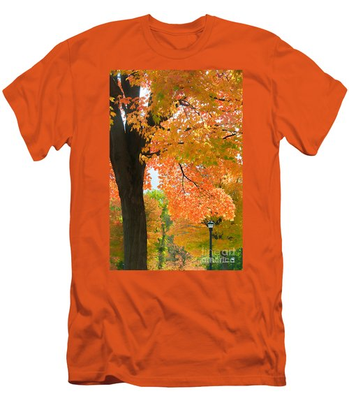 Men's T-Shirt (Athletic Fit) featuring the photograph Sunny Fall Day By David Lawrence by David Perry Lawrence