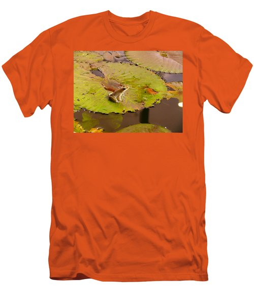 The Frog Men's T-Shirt (Slim Fit) by Evelyn Tambour