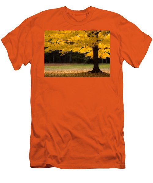 Tree Canopy Glowing In The Morning Sun Men's T-Shirt (Slim Fit) by Jeff Folger