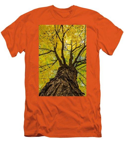 Under The Yellow Canopy Men's T-Shirt (Slim Fit) by Debra Martz