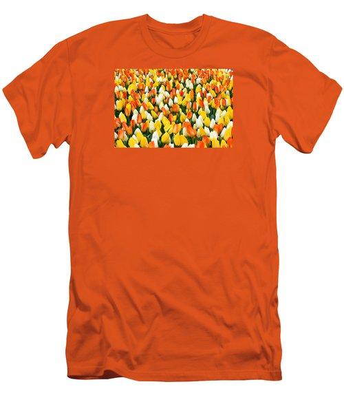 White Orange And Yellow Tulips Men's T-Shirt (Slim Fit) by Menachem Ganon