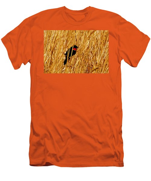 Blackbird In The Reeds Men's T-Shirt (Athletic Fit)