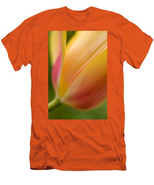 April Grace Men's T-Shirt (Slim Fit) by Mike Reid