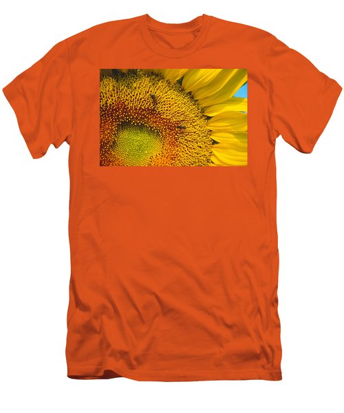 Busy Sunflower Men's T-Shirt (Athletic Fit)
