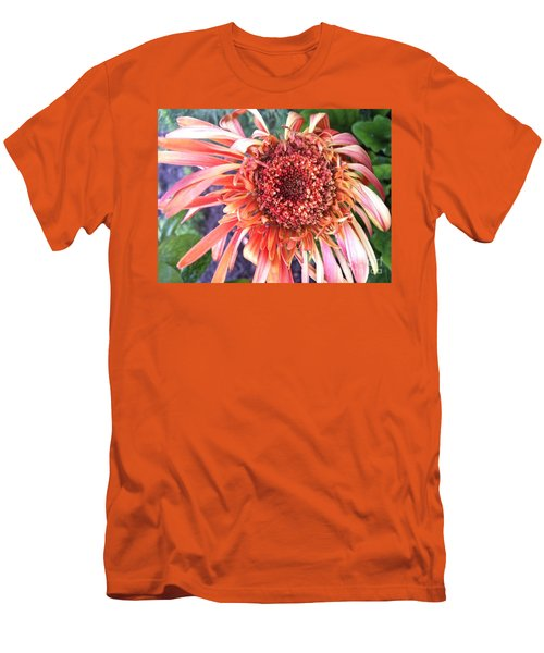 Daisy In The Wind Men's T-Shirt (Athletic Fit)