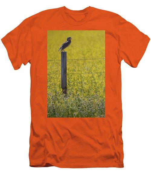 Meadowlark Singing Men's T-Shirt (Athletic Fit)