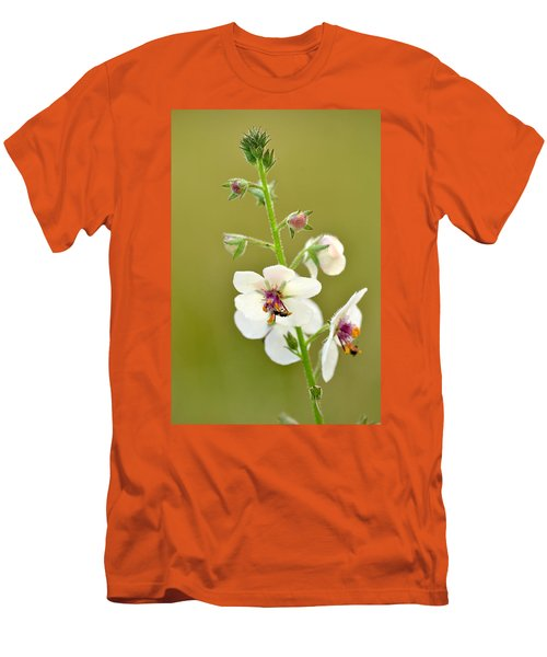 Men's T-Shirt (Slim Fit) featuring the photograph Moth Mullein by JD Grimes