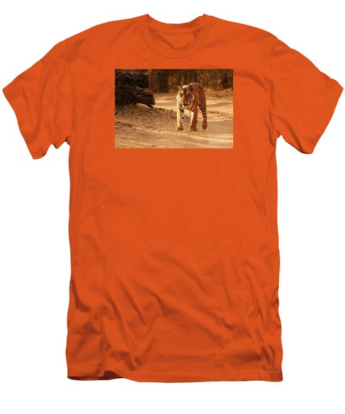 The Royal Bengal Tiger Men's T-Shirt (Slim Fit) by Fotosas Photography