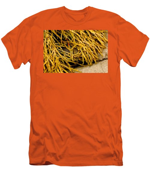 Men's T-Shirt (Slim Fit) featuring the photograph Yellow Kelp by Brent L Ander