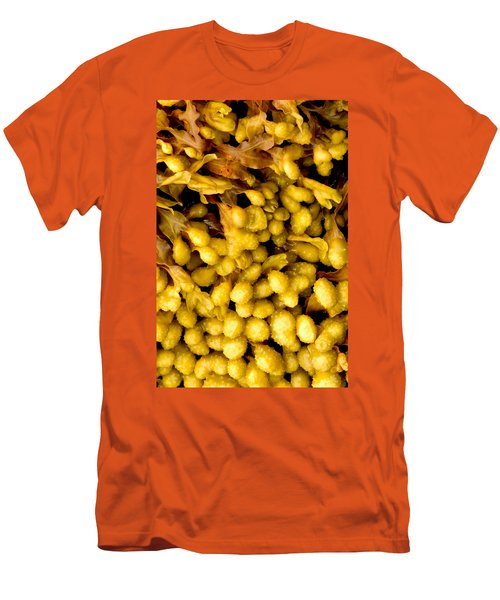 Men's T-Shirt (Slim Fit) featuring the photograph Yellow Kelp Pods by Brent L Ander