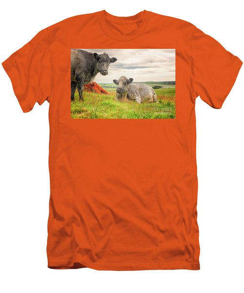 Colorful Highland Cattle Men's T-Shirt (Slim Fit) by Patricia Hofmeester