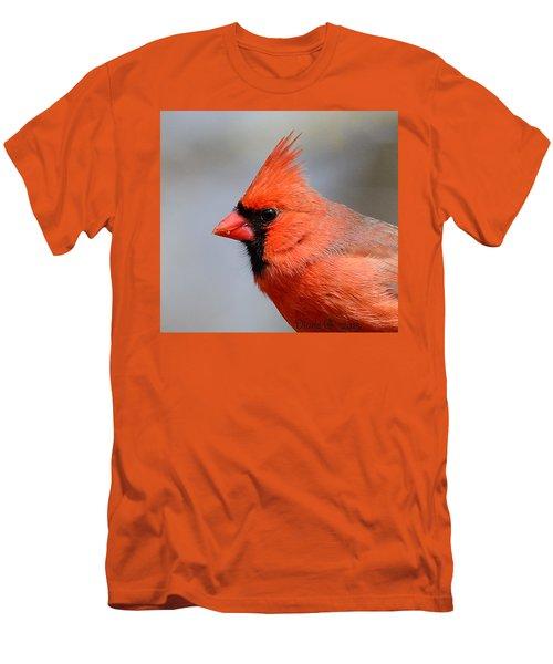 Male Cardinal Men's T-Shirt (Slim Fit) by Diane Giurco