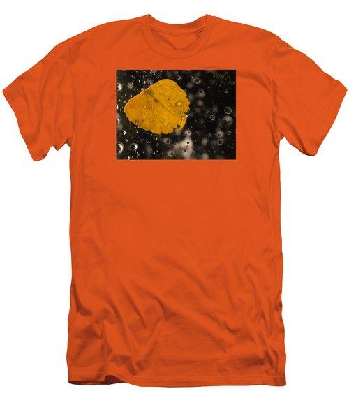 This One Followed Me Home... Men's T-Shirt (Slim Fit) by Craig Szymanski