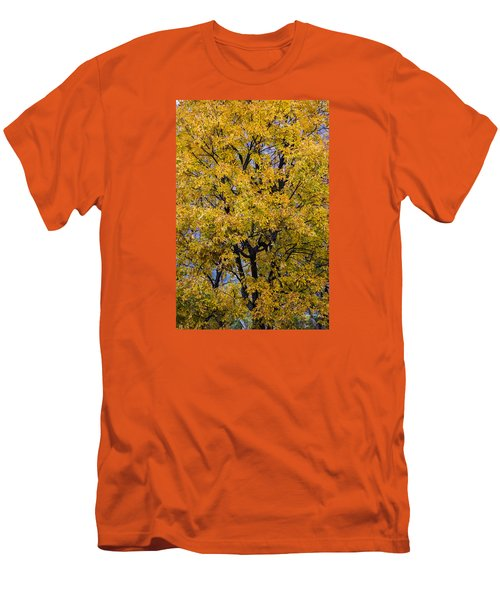 Men's T-Shirt (Slim Fit) featuring the photograph Fall Color Virginia West Virginia by Kevin Blackburn
