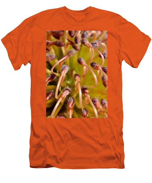 Common Pincushion Protea Men's T-Shirt (Athletic Fit)
