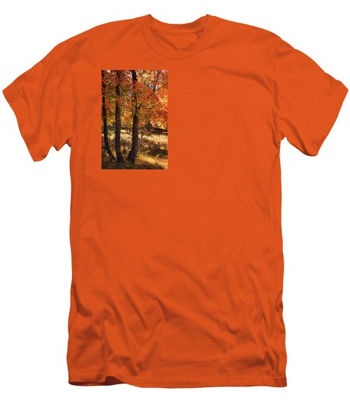 Men's T-Shirt (Athletic Fit) featuring the photograph The Colors Of Autumn  by Saija Lehtonen