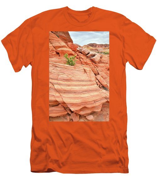 Men's T-Shirt (Slim Fit) featuring the photograph Colorful Wash In Valley Of Fire by Ray Mathis