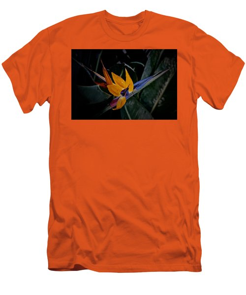 A Bright Blooming Bird Men's T-Shirt (Slim Fit) by Tim Good