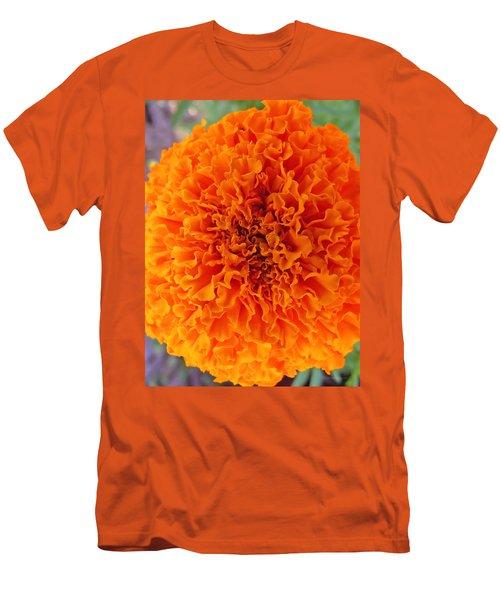 A Burst Of Orange Men's T-Shirt (Athletic Fit)