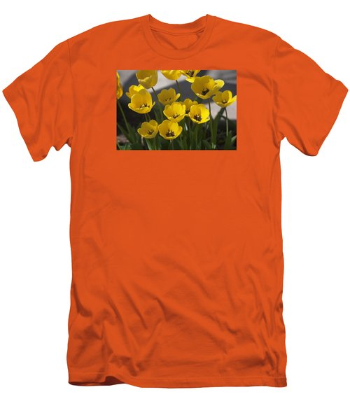 A Gathering Of Tulips Men's T-Shirt (Slim Fit) by Morris  McClung