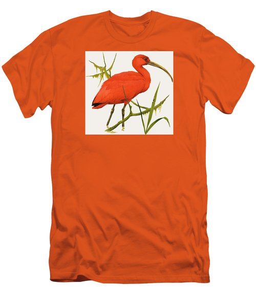 A Scarlet Ibis From South America Men's T-Shirt (Slim Fit) by Kenneth Lilly