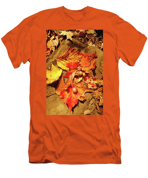 Men's T-Shirt (Slim Fit) featuring the photograph Acorns Fall Maple Leaf by Meta Gatschenberger