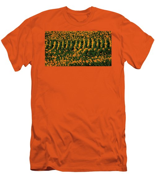 Men's T-Shirt (Slim Fit) featuring the photograph All In A Row by Chris Berry