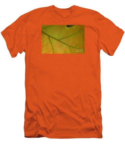 Men's T-Shirt (Slim Fit) featuring the photograph An Autumn Leaf by Jean Bernard Roussilhe