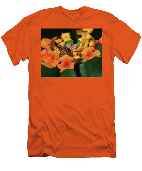 Men's T-Shirt (Slim Fit) featuring the photograph Ant On Plant  by Richard Rizzo
