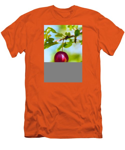 Crab Apple Men's T-Shirt (Slim Fit) by Constantine Gregory