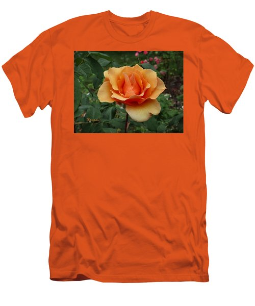 Apricot Rose Men's T-Shirt (Athletic Fit)