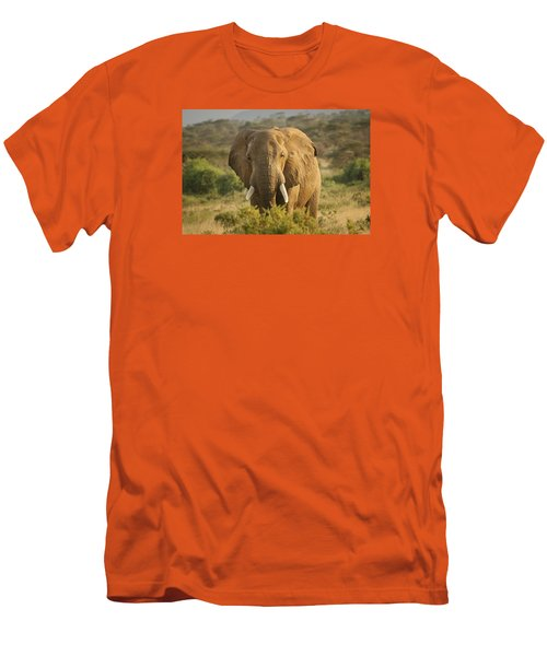 Men's T-Shirt (Slim Fit) featuring the photograph Are You Looking At Me? by Gary Hall