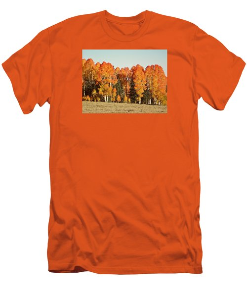 Aspen Forest In Autumn Men's T-Shirt (Slim Fit) by Deborah Moen