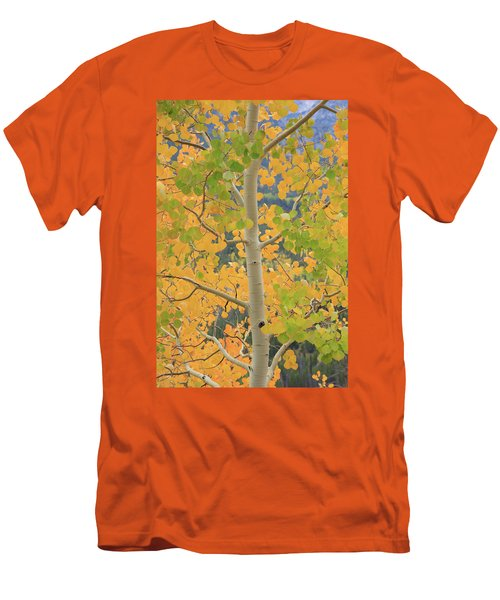 Aspen Watching You Men's T-Shirt (Slim Fit) by David Chandler