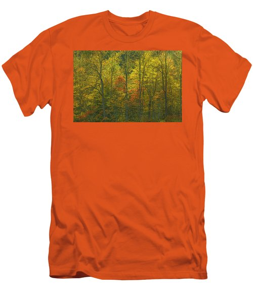 At The Edge Of The Forest Men's T-Shirt (Slim Fit) by Ulrich Burkhalter