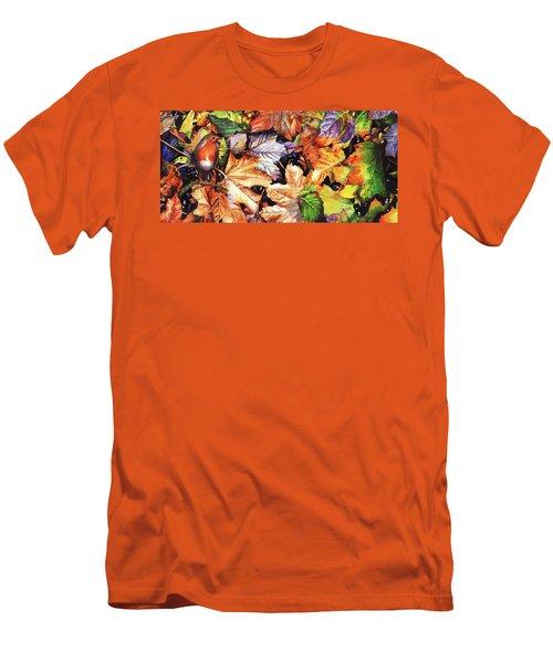 Autumn Blaze Men's T-Shirt (Athletic Fit)