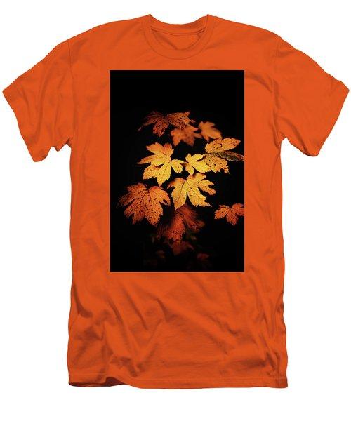 Autumn Photo Men's T-Shirt (Athletic Fit)