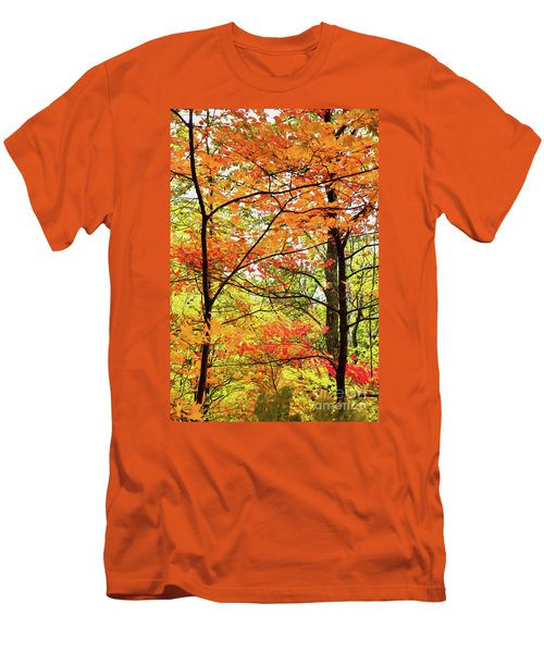 Men's T-Shirt (Slim Fit) featuring the painting Autumn Splendor Fall Colors Leaves And Trees Ap by Dan Carmichael