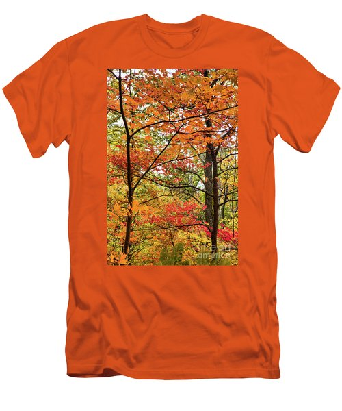 Autumn Splendor Fall Colors Leaves And Trees Men's T-Shirt (Slim Fit) by Dan Carmichael