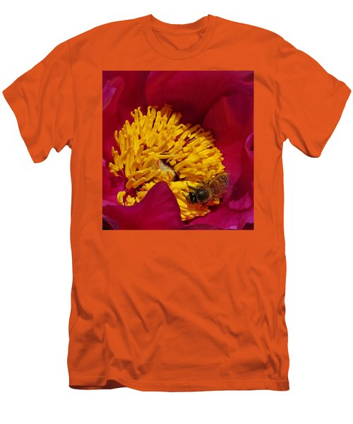 Bee On A Burgundy And Yellow Flower2 Men's T-Shirt (Slim Fit) by John Topman