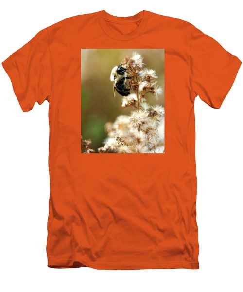 Bee On Goldenrod Men's T-Shirt (Athletic Fit)