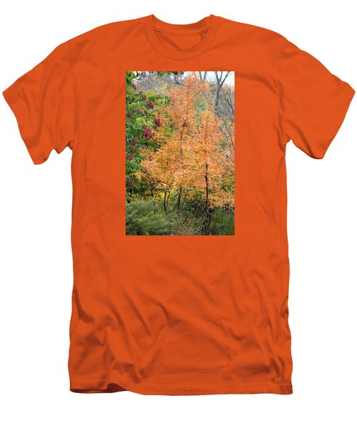 Before The Fall Men's T-Shirt (Slim Fit) by Deborah  Crew-Johnson