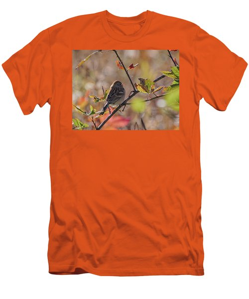 Bird In  Tree Men's T-Shirt (Athletic Fit)