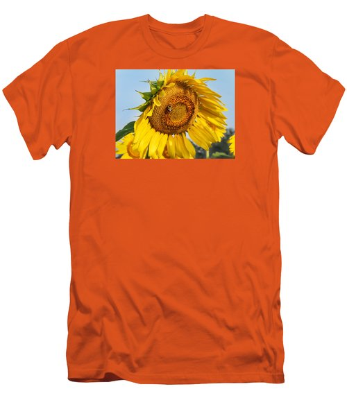 Bowed Sunflower Men's T-Shirt (Athletic Fit)