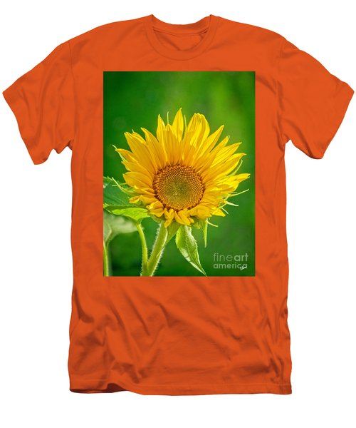 Bright Yellow Sunflower Men's T-Shirt (Slim Fit) by Alana Ranney