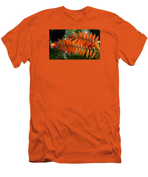 Brilliant Orange Nature Men's T-Shirt (Slim Fit) by Steve Archbold